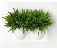 Basiclabel Wand opbergbak / plantenbak wit kunststof Wit