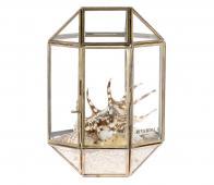 Riverdale Belton Terrarium box goud  metaal/glas